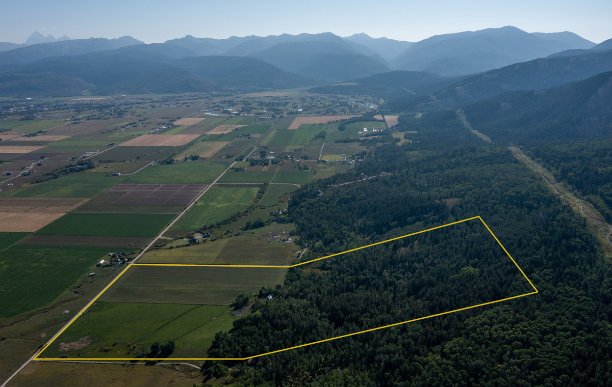Rare Opportunity: 80 Acres Bordering National Forest